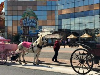 Horse and Carriage in Blackpool