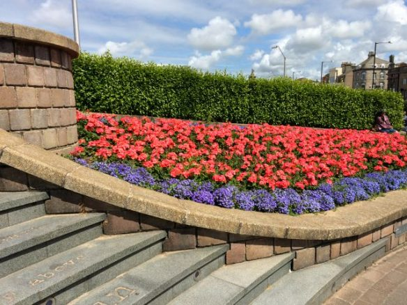 Flower Bed in Morecambe
