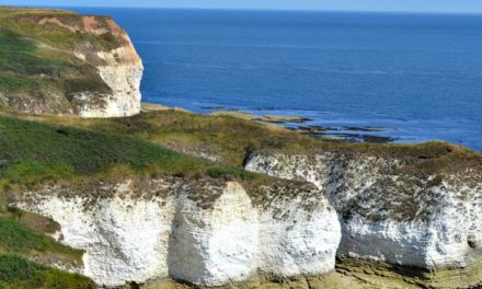 North Yorkshire Coast – Flamborough to Whitby