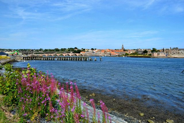 Overlooking Berwick upon Tweed