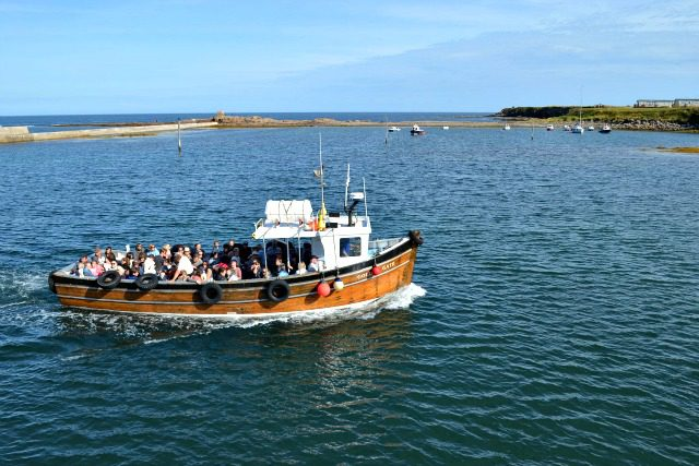 Seahouses Boat Tours