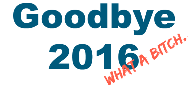 Goodbye and Good Riddance 2016 – What a Bitch!