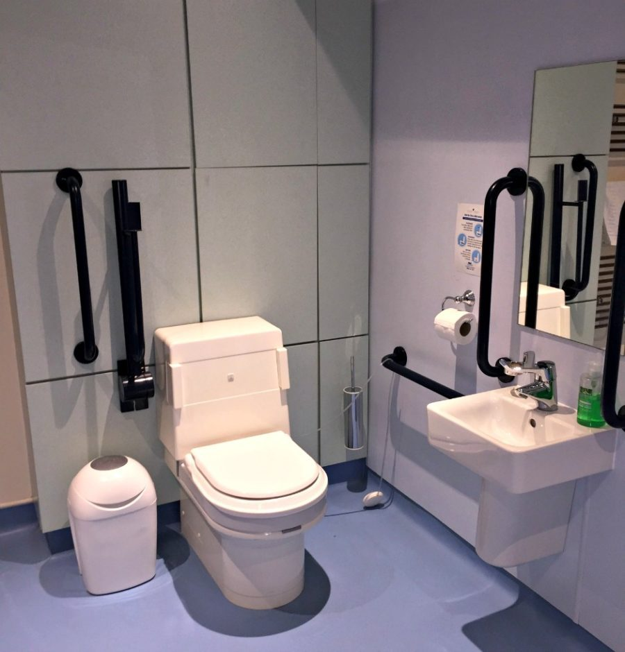 Disabled Toilet in Wet Room