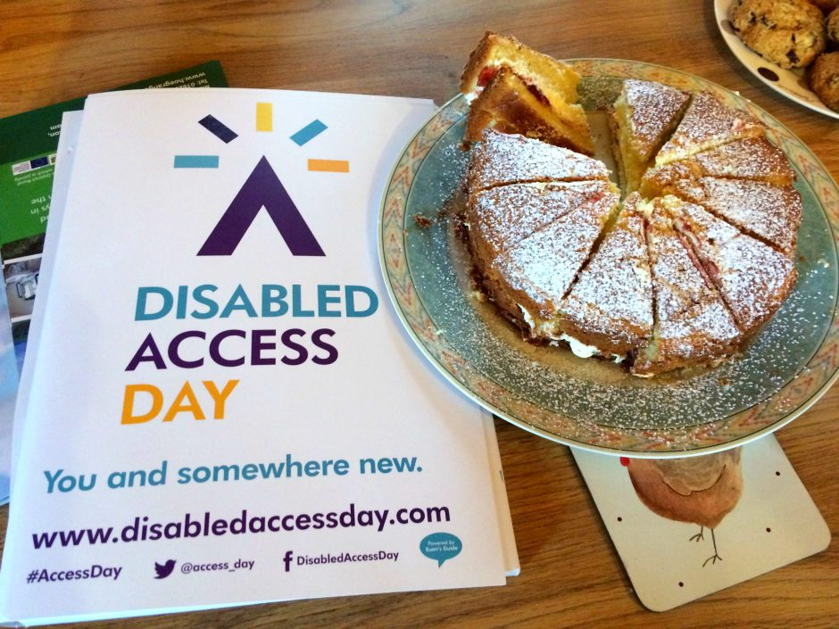 Disabled Access Day Cakes