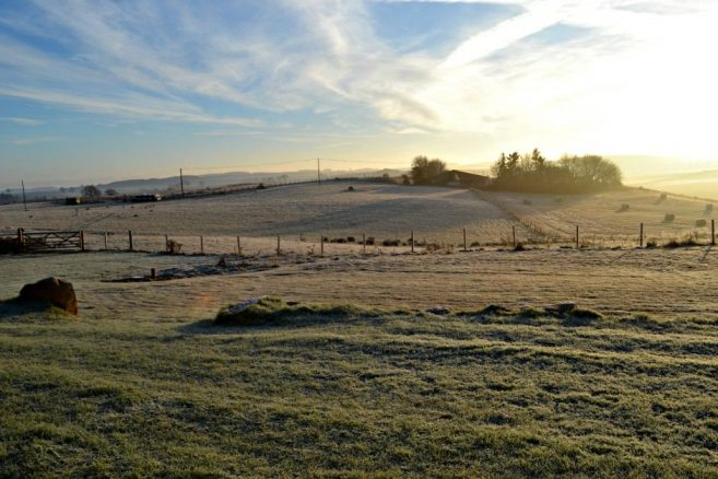 Crisp Morning in Fife