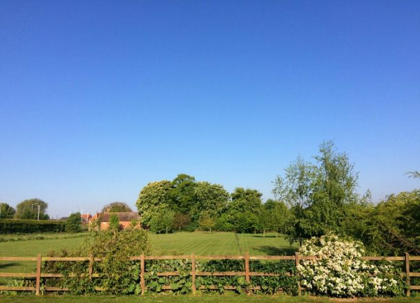 View Over the Paddock from Elm Cottage