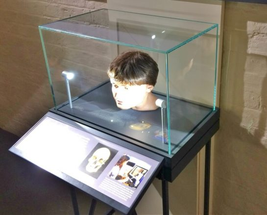 Reconstructed Head in Lincoln Castle Museum