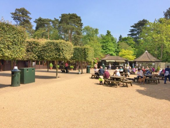 Days Out in Sandringham